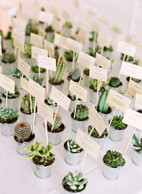 7 Party Favor Ideas for Your Spring Garden Party
